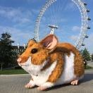 Kwik Fit Hamster